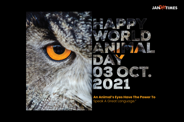 Images of World Animal Day